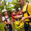 Zipline FruitOffering